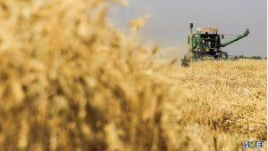 ممنوعیت صادرات كاه، سبوس، كنجاله، انواع تفاله هاي نباتي